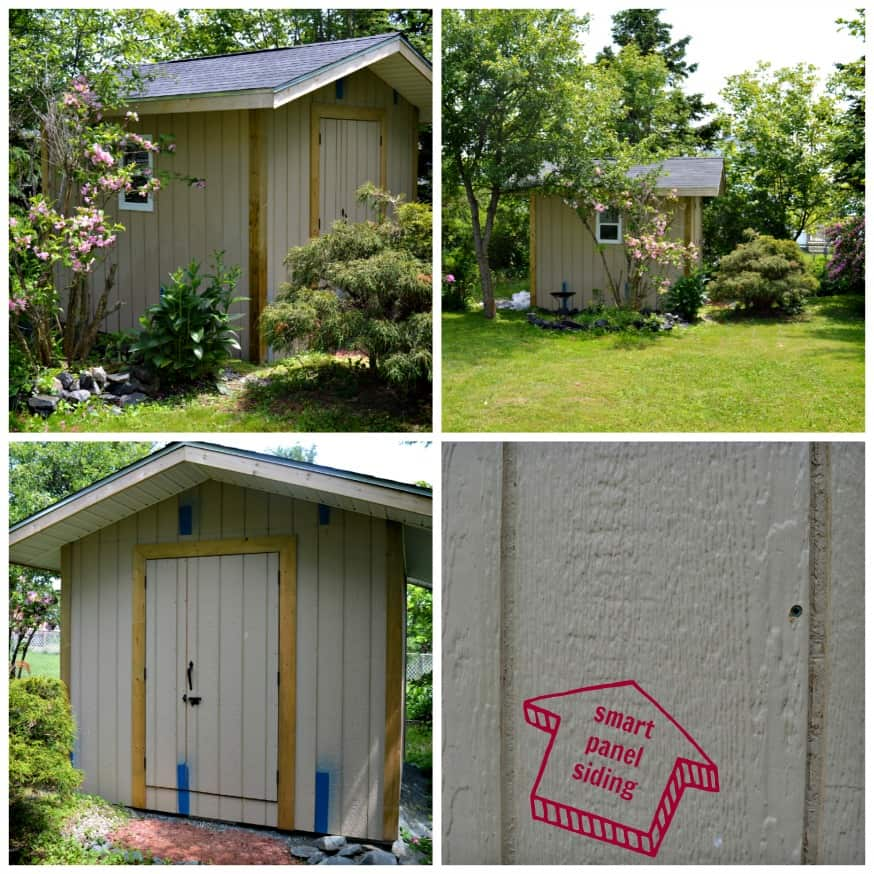 How to Paint Your Shed the Right Way - DIY Passion