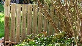 How to Make a DIY Wood Wall from an Old Fence