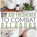 diy air freshener