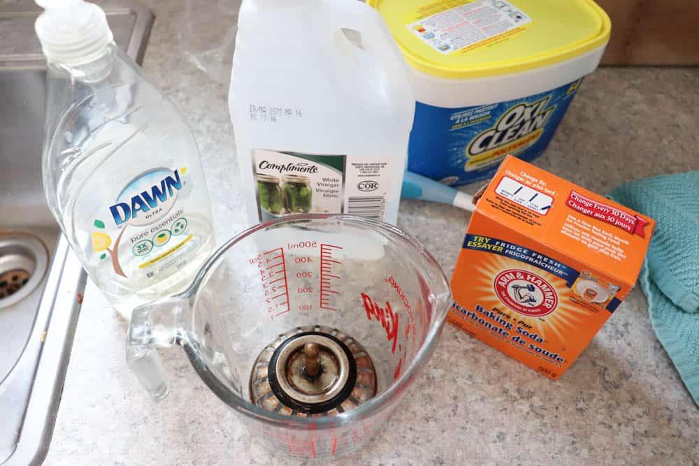 Methods for Getting Rid of Fruit Flies