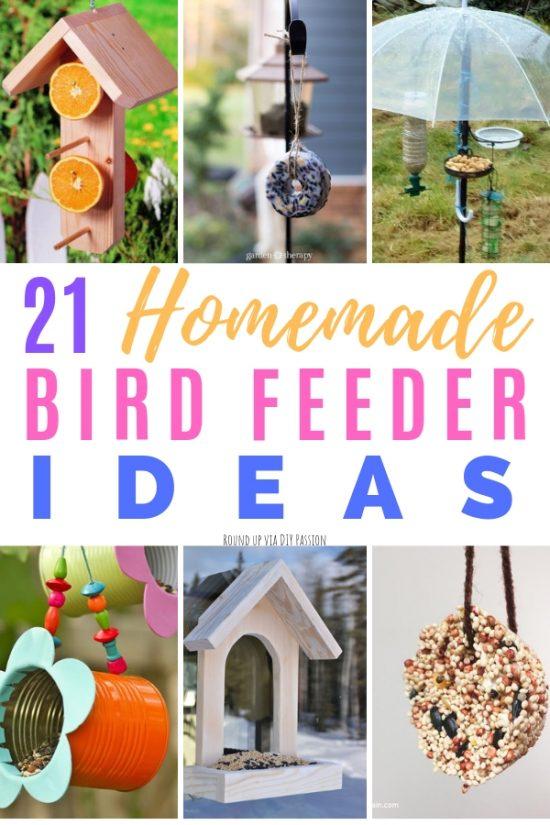 Diy Homemade Bird Feeder Ideas