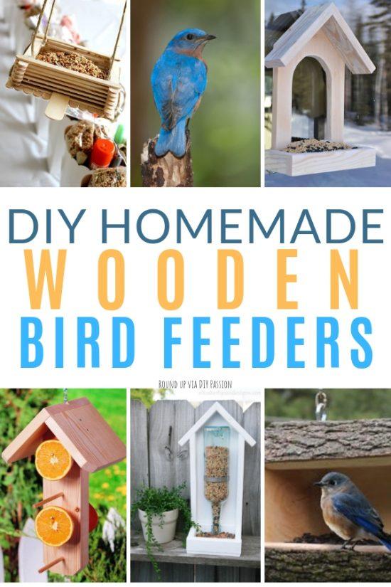 Diy Homemade Bird Feeder Ideas Diy Passion