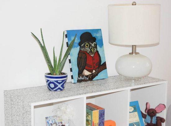 plant on top of small white bookshelf